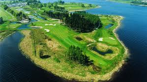 tulfarris golf1
