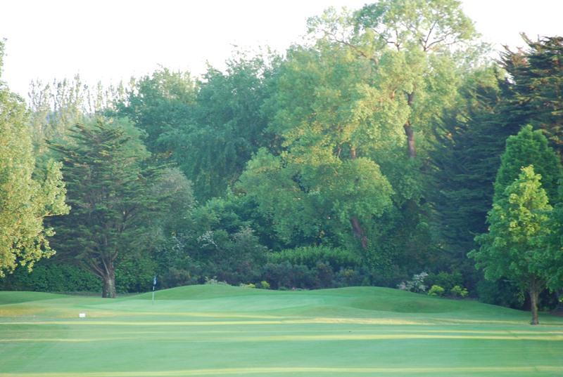 Limerick Golf Club Update - Volunteers Needed (2/2)